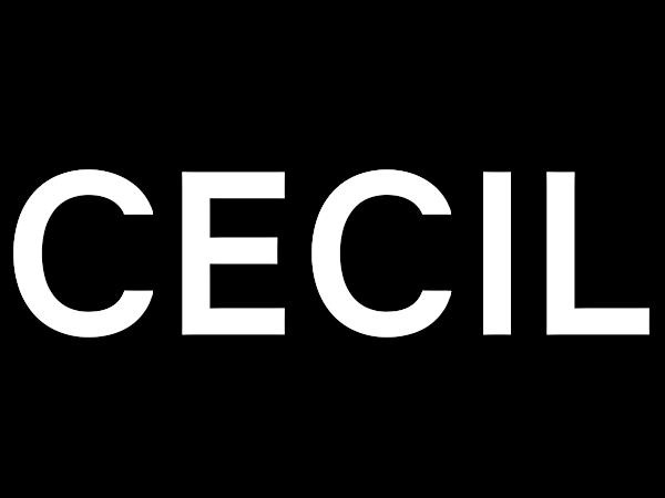 outlet Sortendesign heißer verkauf billig Label Cecil Mode – Die Marke für alltägliche Damenmode