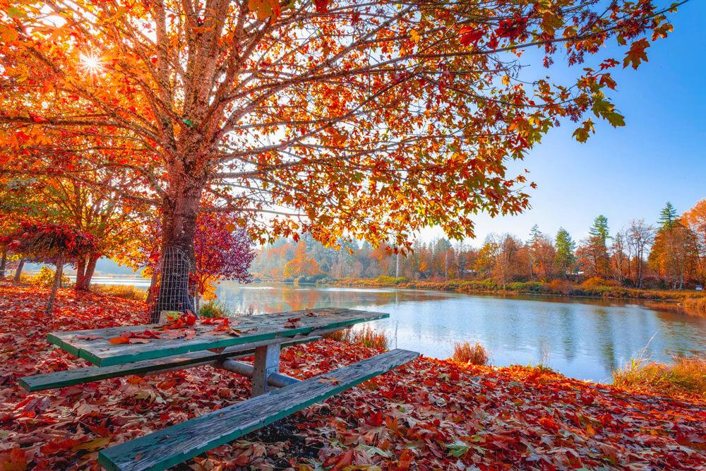 Fit durch den Herbst
