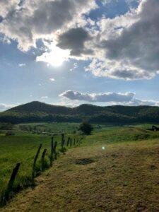 Feld in der Solling Vogler Region
