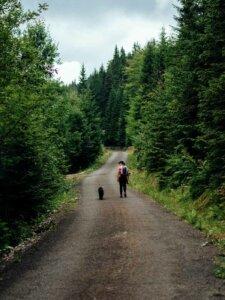 Wanderer mit Hund im Weserbergland